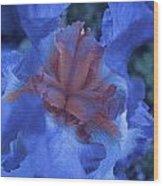 Iris Oil Painting Wood Print