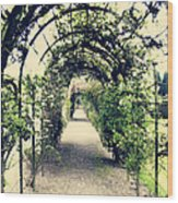 Irish Archway Wood Print