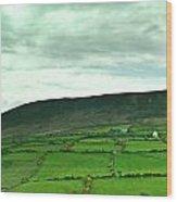 Irish Countryside 2 Wood Print