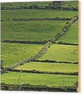 Irish Countryside Near Valenica Island Wood Print