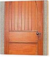 Irish Door One Wood Print