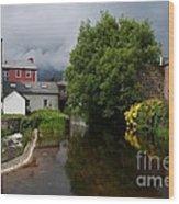 Irish Houses Wood Print by Louise Fahy