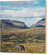 Irish Landscape 100 Wood Print