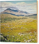 Irish Landscape 101 Wood Print