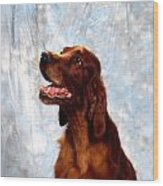 Irish Red Setter Wood Print