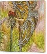 Iron Butterflys Wood Print