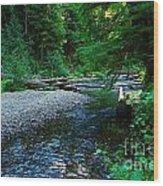 Iron Creek  Wood Print