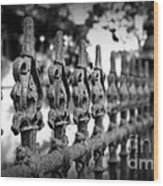 Iron Fence 2 Wood Print by Perry Webster