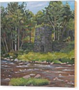 Iron Furnace Of Franconia New Hampshire Wood Print
