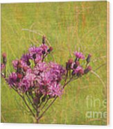 Ironweed In Autumn Wood Print