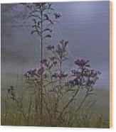 Ironweed Morning Wood Print