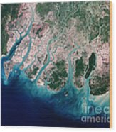 Irrawaddy River Delta Wood Print by Nasa