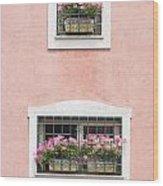Ischia Windows Wood Print