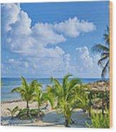 Island Beauty Wood Print