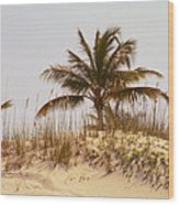 Island Sand Dune Wood Print