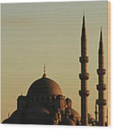 Istanbul Yeni Cami (new Mosque) Wood Print by Andrea Cavallini
