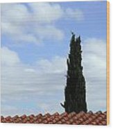 Italian Cyress And Red Tile Roof Rome Italy Wood Print