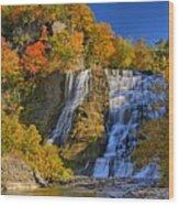 Ithaca Falls In Autumn Wood Print by Matt Champlin