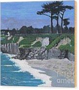 Its Beach Santa Cruz Ca Wood Print