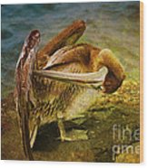 It's Cleaning Day By Pelicans Wood Print