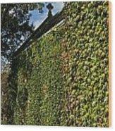 Ivy Covered Chapel Wood Print