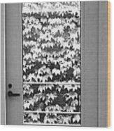 Ivy Door Wood Print