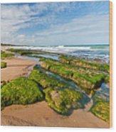 Jacarecica Beach Wood Print