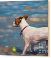Jack At The Beach Wood Print by Michelle Wrighton