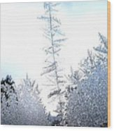 Jack Frost's Ice Forest Wood Print