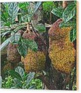 Jack Fruit Wood Print