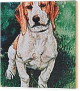 Jack Russell Woogle Wood Print