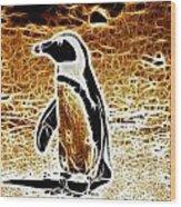 Jackass Penguin  Wood Print