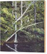 Jackson Bluff On The Waccamaw River Wood Print