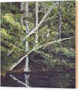 Jackson Bluff On The Waccamaw River Wood Print