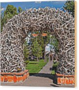 Jackson Hole Wood Print by Robert Bales