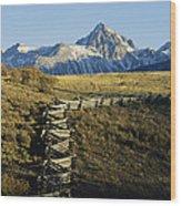 Jagged Peaks Of Dallas Divide, San Juan Wood Print