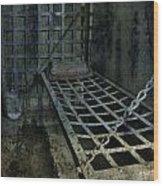Jailbird Cage  Wood Print