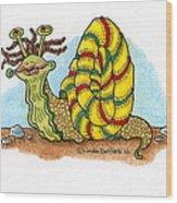 Jamaican Snail Wood Print