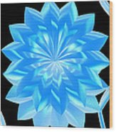 jammer Blue Shimmer Lotus Wood Print