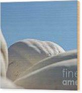 Jammer Gourd Skies 001 Wood Print