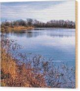 January Bass Pond 2 2012 Wood Print