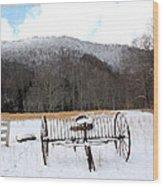 January Day Wood Print