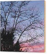 January Silhouette Wood Print