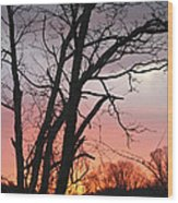 January Sunrise 3 Wood Print