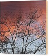 January Sunset Silhouette Wood Print