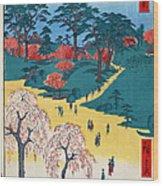 Japan: Temple Gardens Wood Print