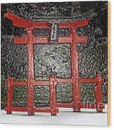 Japanese Garden Bbg Wood Print
