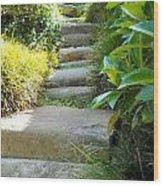Japanese Garden Stone Steps Wood Print