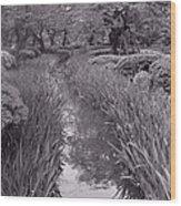 Japanese Garden With Irises Wood Print