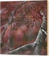 Japanese Maple Blur Wood Print